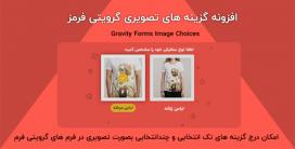 افزونه گزینه های تصویری گرویتی فرمز | Gravity Forms Image Choices