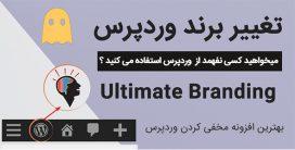 افزونه تغییر برند وردپرس   افزونه ultimate branding